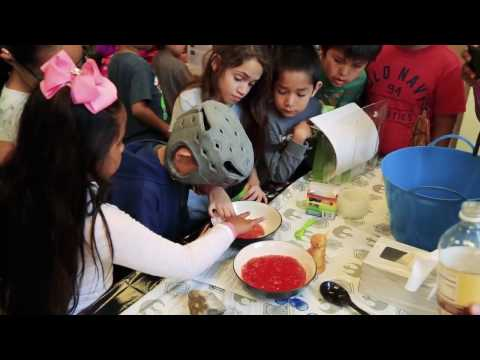 An image still from the ASDB science fair that shows students interacting with science materials.