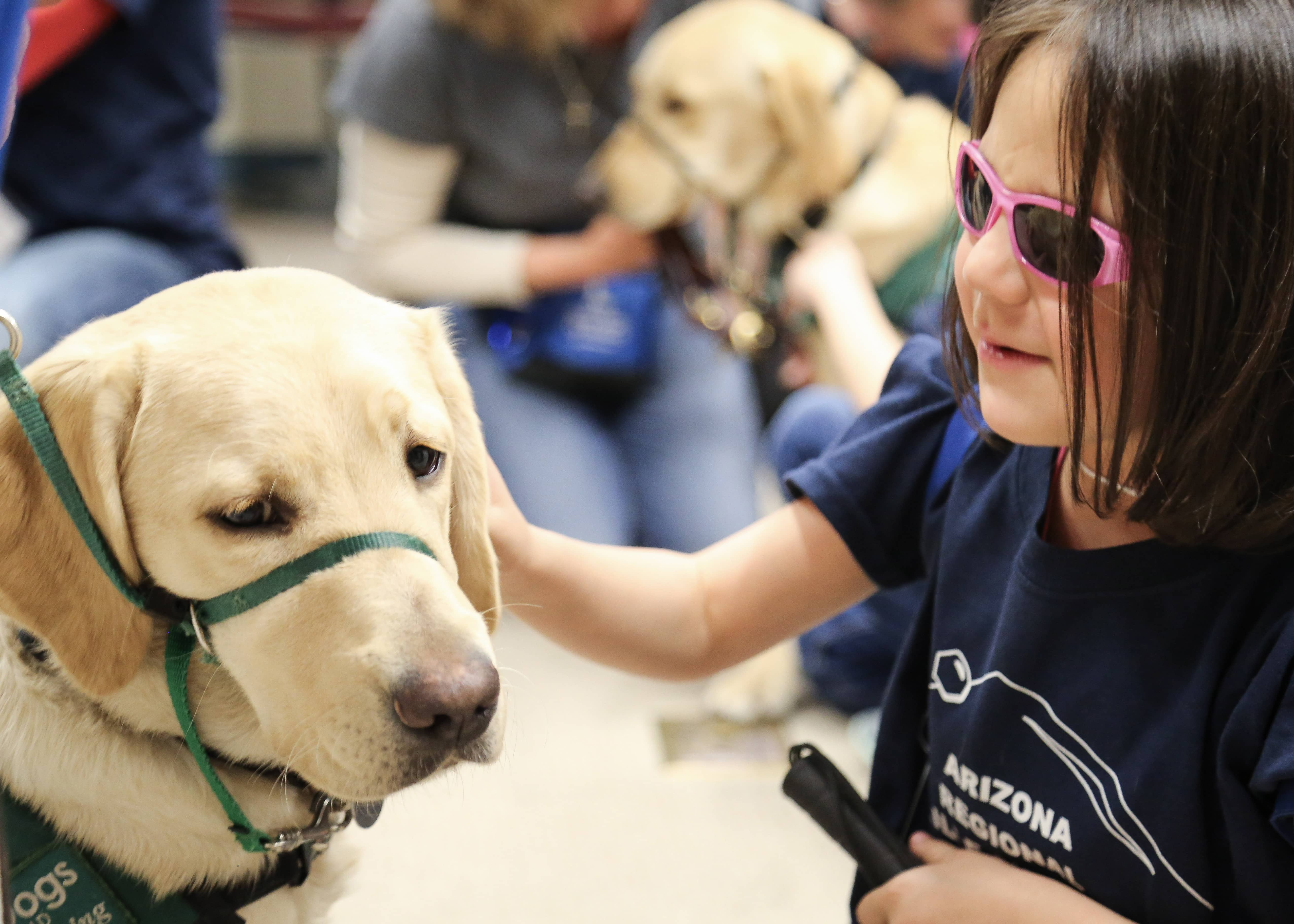 a blind student interacts with a dog